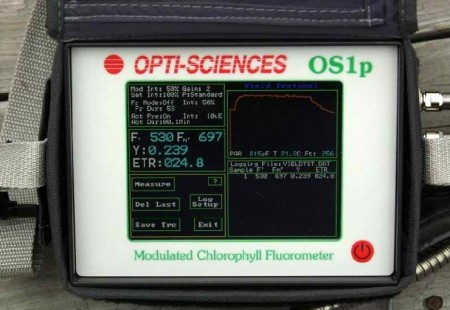 OS1p fluorometer close up of screen