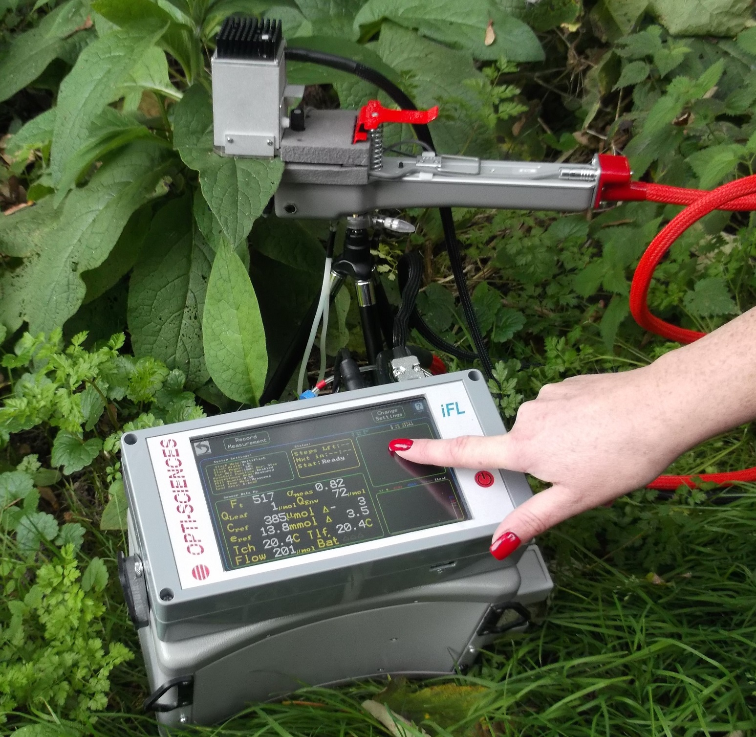 CCM300 chlorophyll content meter